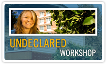 Undeclared Workshop